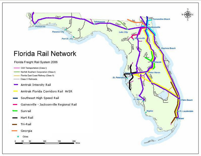 florida rail net.JPG