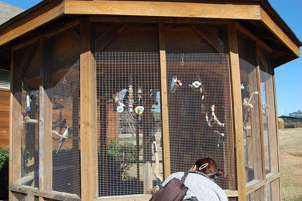 Journal Site 218: Noah's Ark, Locust Grove, GA - Dec 1, 2011