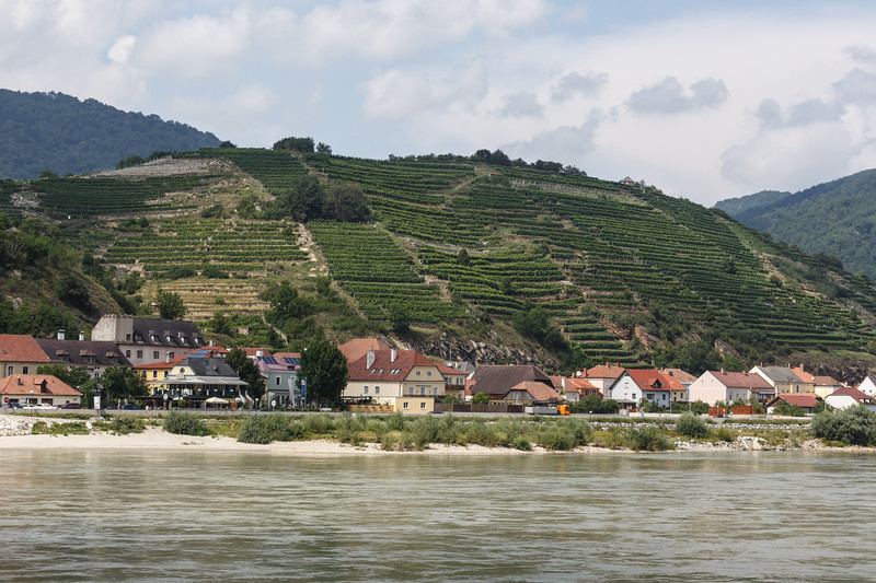 Village of Spitz and vineyards along the Wachau Valley