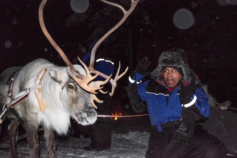 Finland_160117_127.jpg