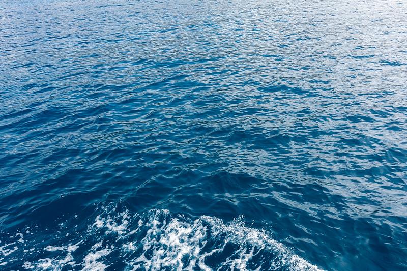 Travel_Hawaii_03072020_0148.jpg