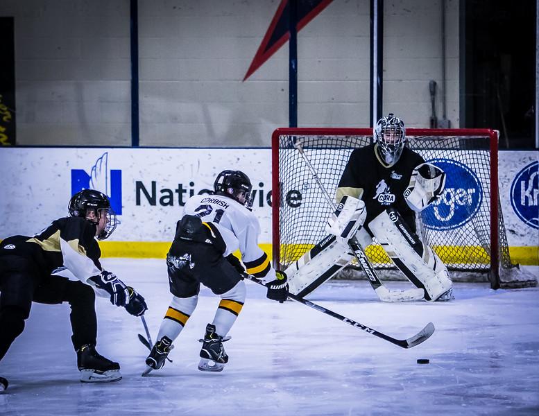 Bruins-21.jpg