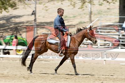 Rider 42