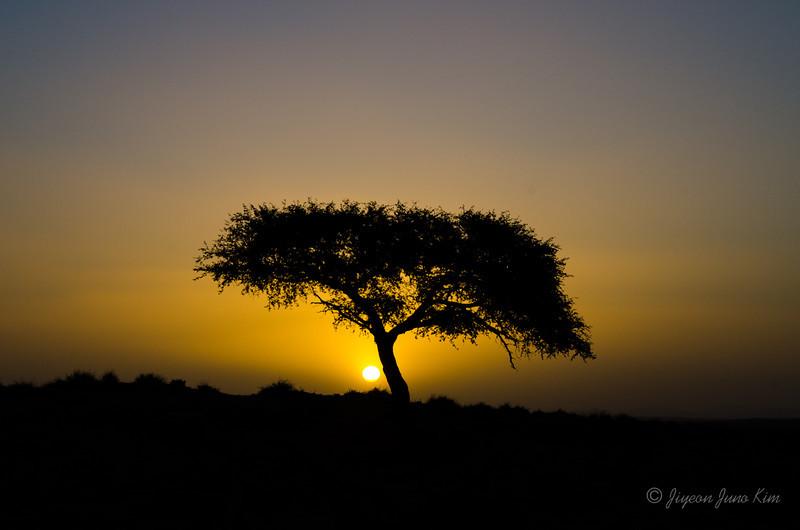Namibia-4234.jpg