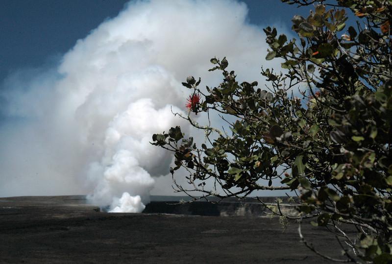 202- 20080412- Hawaii 15- Volcano Nat'l Park DSC_2878.jpg