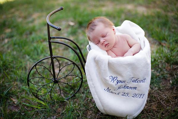 wynn newborn