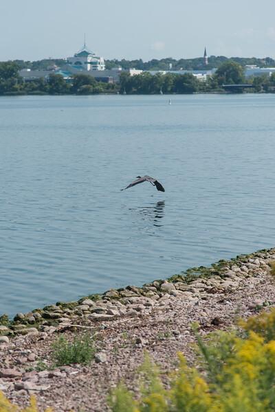 Fishing at Onondaga Lake Sept 2020-14.jpg