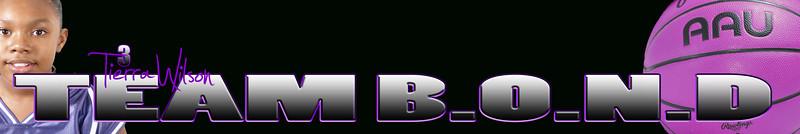 Tierra Team B.O.N.D poster