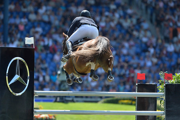 SHOW JUMPING / SAUT D'OBSTACLES