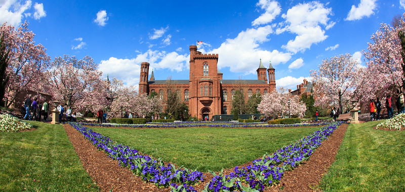 Smithsonian Castle with blooming magnolias 2