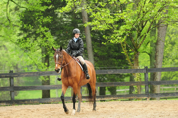 18-Equitation Elimination