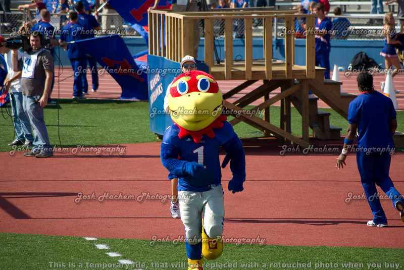 10.11.2008 KU v CU football (106).jpg