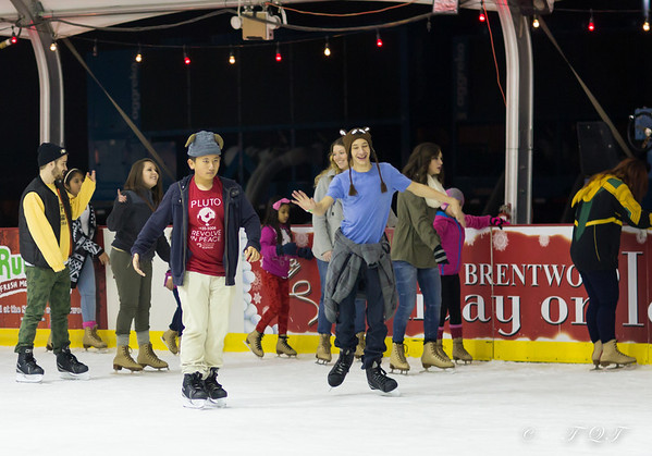 Brentwood Holiday on Ice 2013