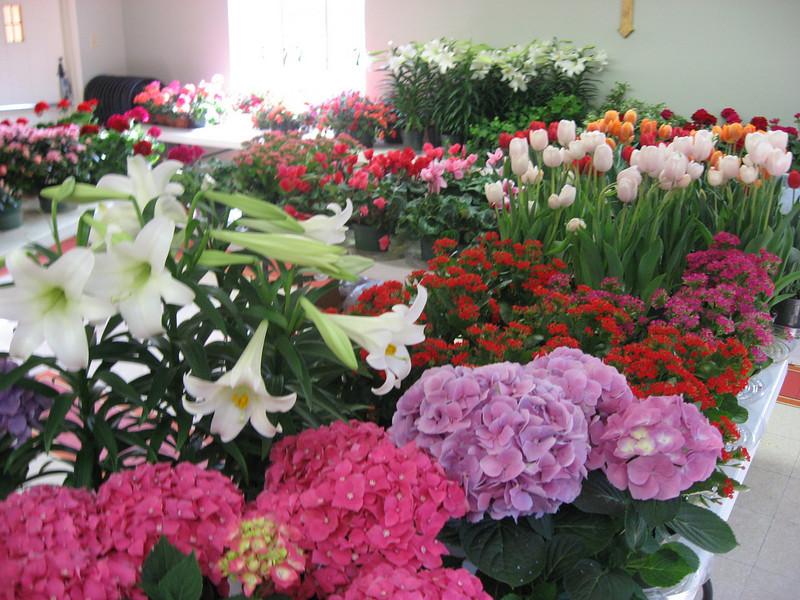 Easter 2011 032.jpg