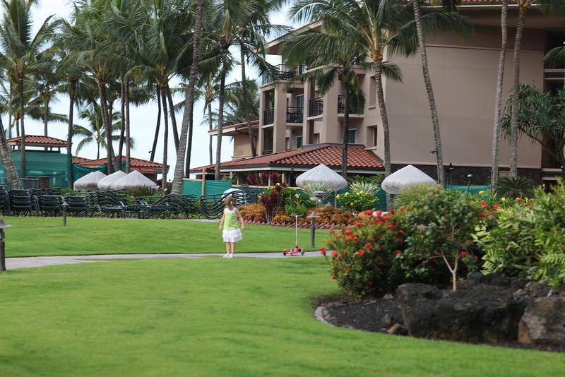 Kauai_D4_AM 017.jpg