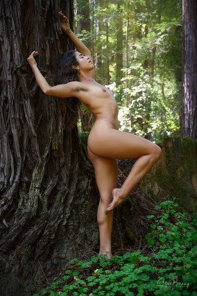 Eva in the Forest