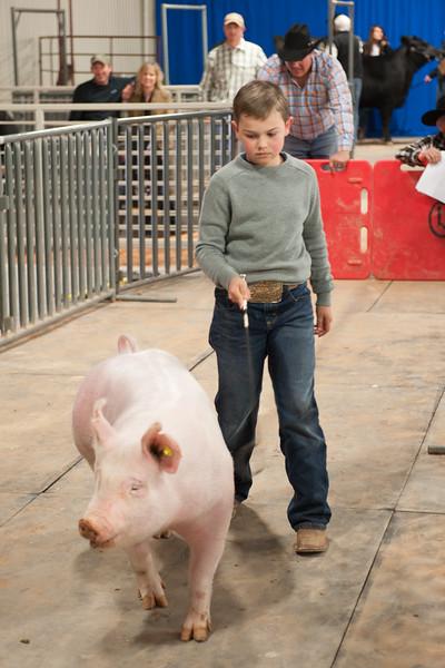 Hays County Show-9808.jpg