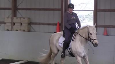 TSRC 2020-03-19 Wildfire Farm Videos