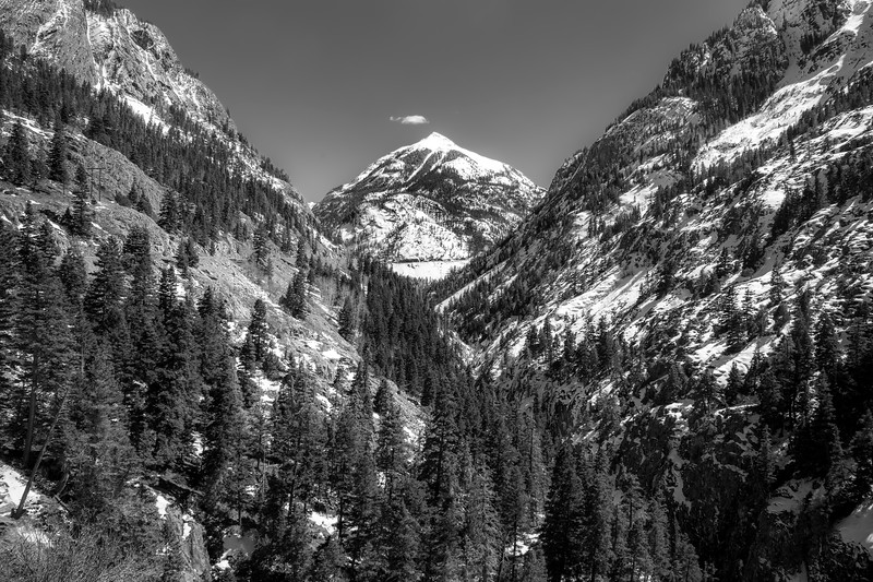Abrams Mountain Winter in Black and White