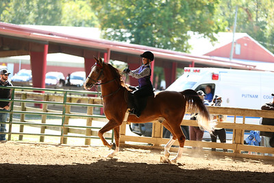 29) Academy W/T Showmanship 9-10 year olds