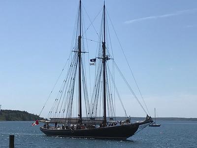 Halifax FEI Trip 2018