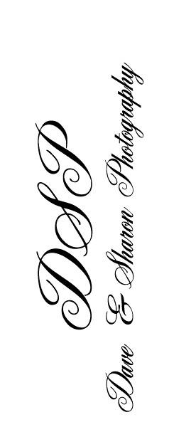 logo Dave & Sharon-90.jpg