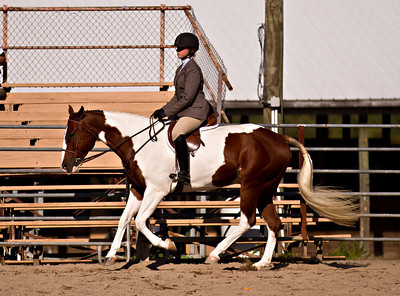 4H Districts 09/17/11 Breed typ Hunter Under Saddle Sr
