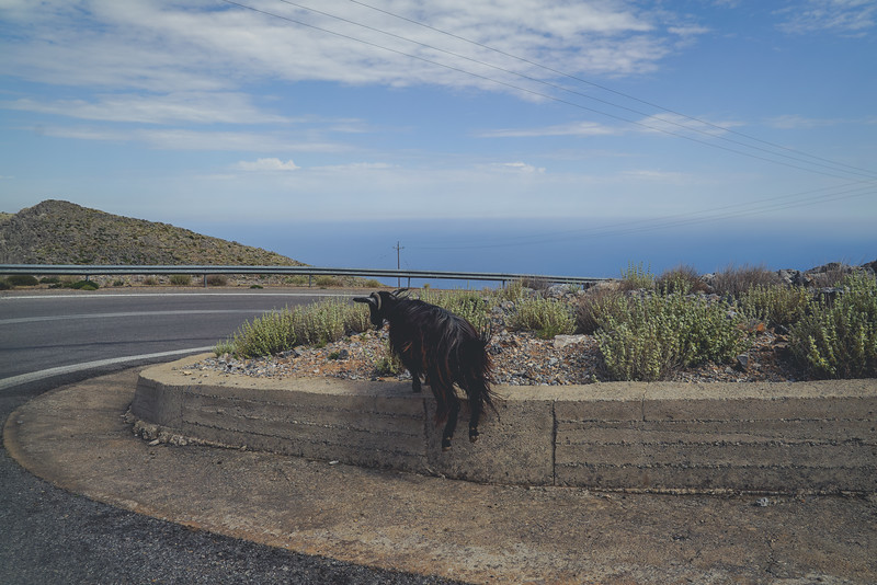 Crete 06.17-181.jpg