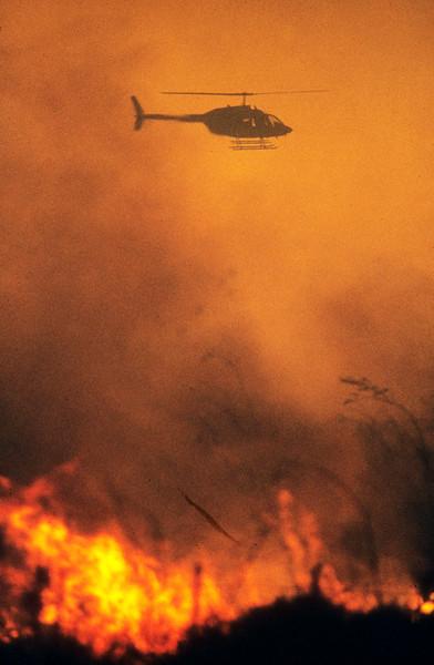 Laguna Beach Firestorm II
