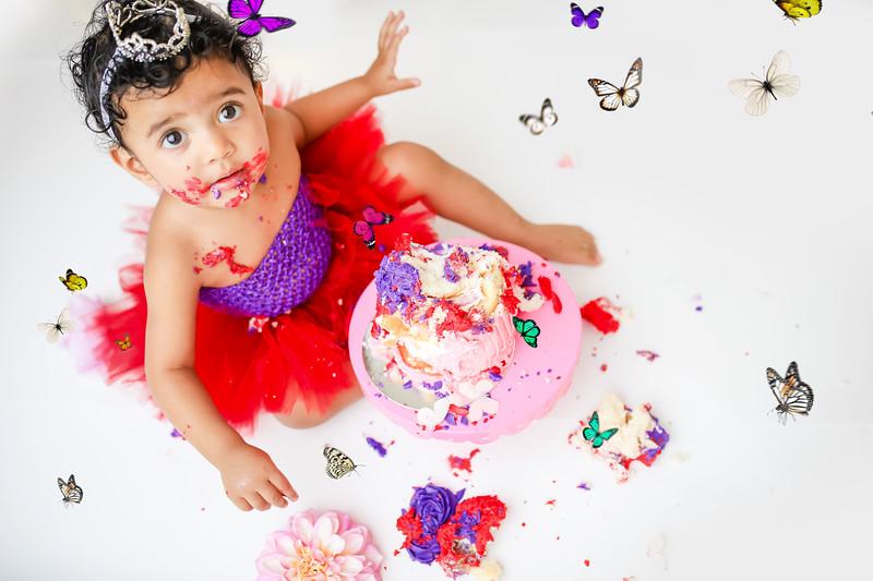bbutterfly-newport_babies_photography_butterfly_cakesmash-9674-1.jpg
