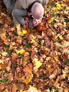 eloise leaves November 25