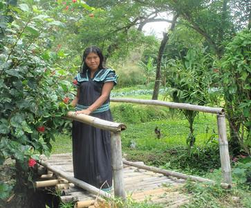 El Valle Organic Farm