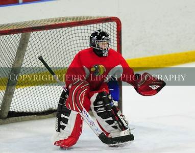 Hockey at Midwest Ice Arena January 4th, 2014