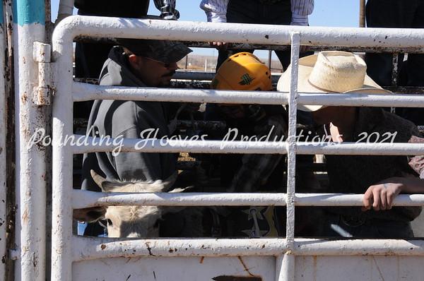2-17-13 Sat Calf Riding