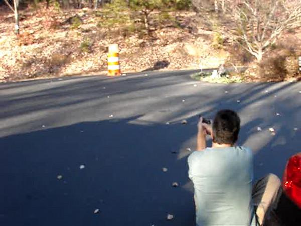 Thanksgiving '08 Shooting Videos