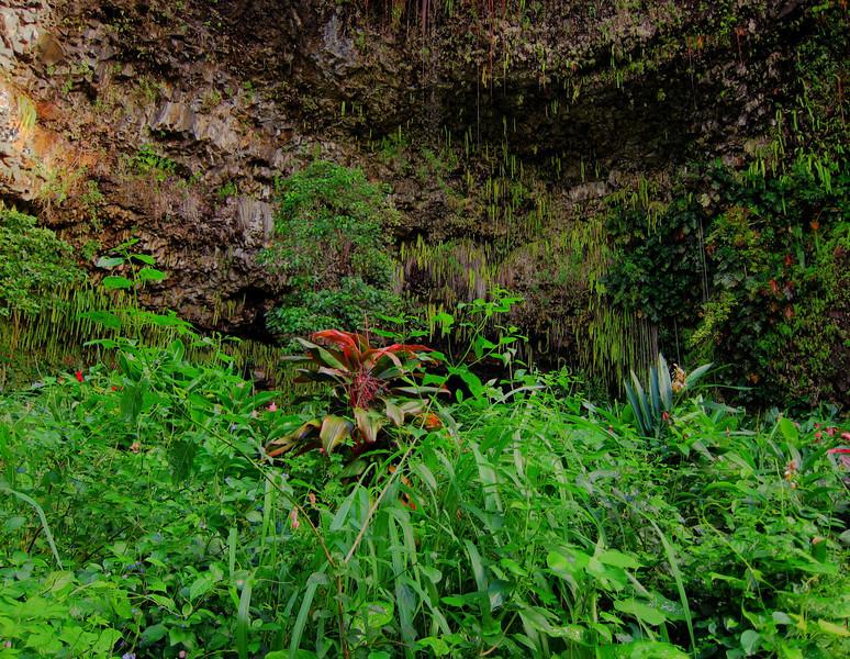 Kauai'10_S90_HDR3_154.jpg