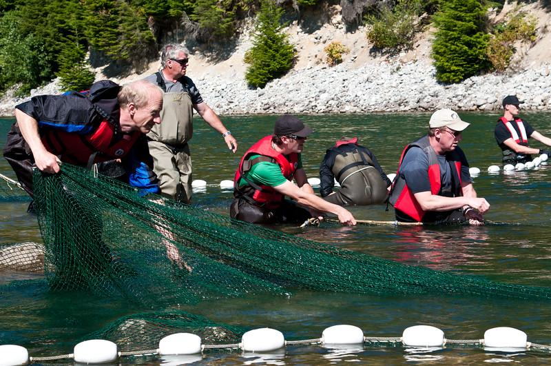 Phillips River 2011-139.jpg
