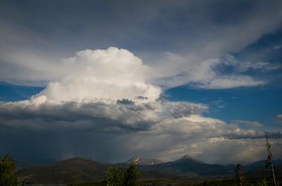 2014-07-Nature