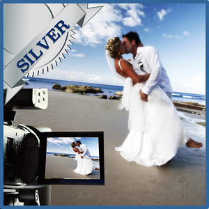 31213 Professional wedding day videography Silver