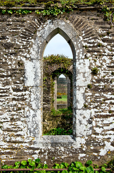 Arched Lichen, Inchigeelagh Church; County Cork, Ireland 2017
