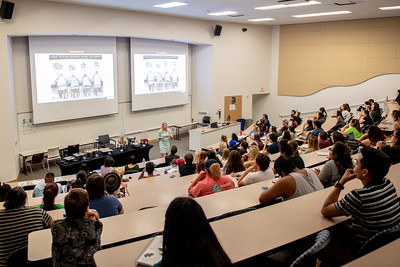 041119 Dr. Rebecca Gill Public Lecture
