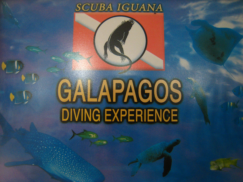 Diving in the Galapagos (85 of 392)