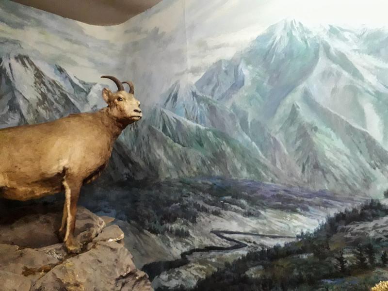 Yakutia Museum