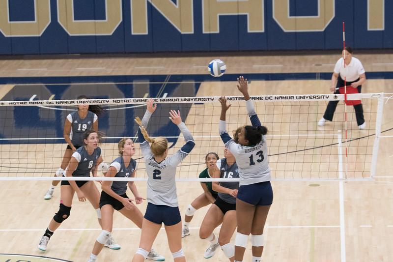 HPU Volleyball-92297.jpg