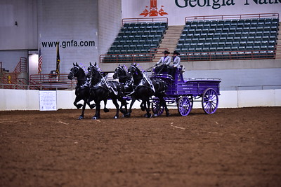 4 horse groupB