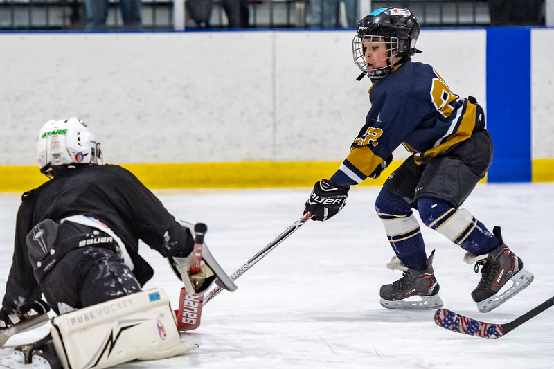 2019-02-03-Ryan-Naughton-Hockey-71.jpg