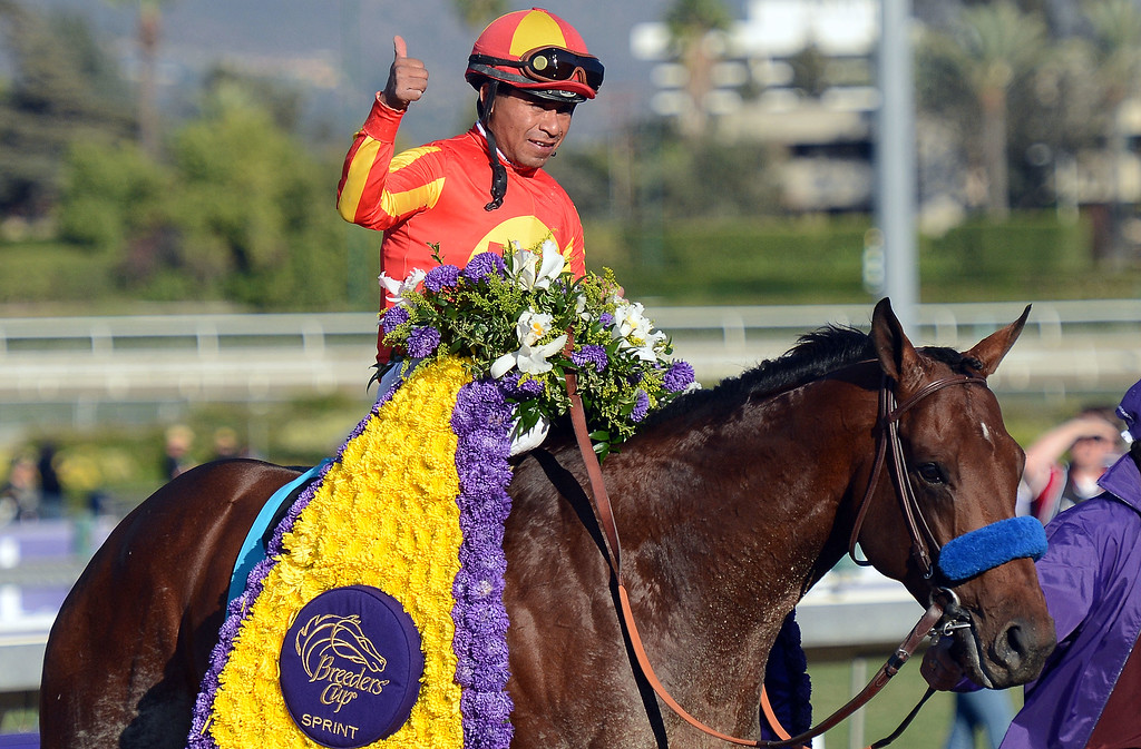". Jockey Martin Garcia atop ""Secret Circle\"" gives the thumbs-up after winning the Xpressbet Breeders\' Cup Sprint in the tenth race during the Breeders\' Cup at Santa Anita Park in Arcadia, Calif., on Saturday, Nov. 2, 2013.    (Keith Birmingham Pasadena Star-News)"