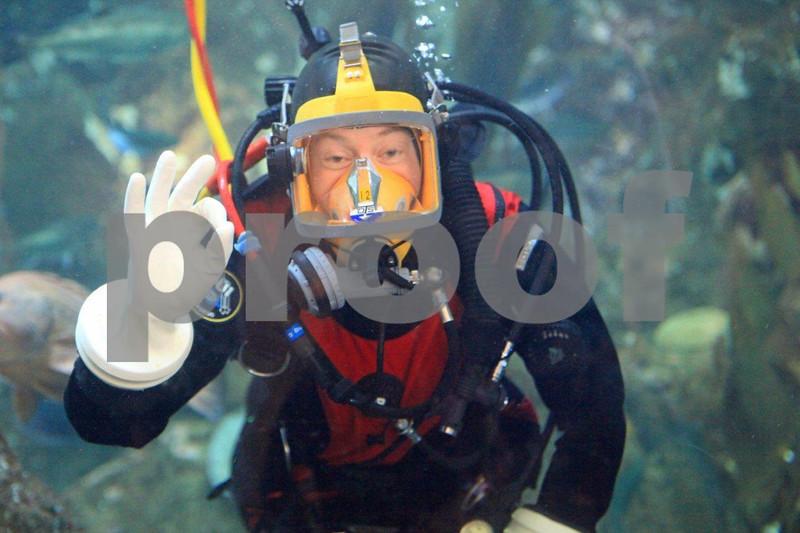 Seattle Aquarium 9100.jpg