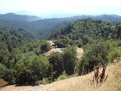 Taken at Lat/Lon:37.167738/-122.038779 Near Redwood Estates California United States  (Map link)