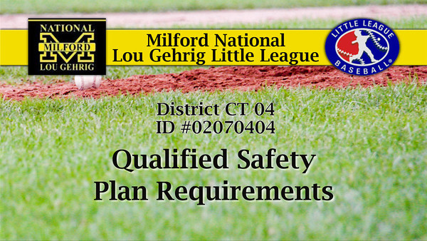 MNLGLL Safety Plan 2013